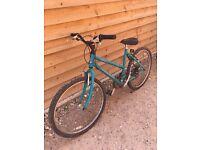 """Ladies/girls 18"""" Raleigh bicycle"""