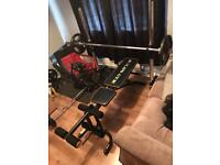 Gym equipment (Bench, Olympic Barbell, Dumbell, Weights, Bumper Plates)