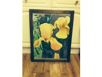 AMAZING FLOWER OIL PAINTING - EXCELLENT CONDITION
