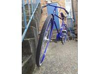 Atlas BRAND NEW Classic line bikes *REDUCED*