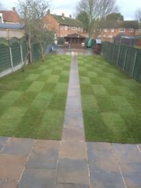 Professional Garden Services, All equipment provided, Rubbish Disposed, London Areas