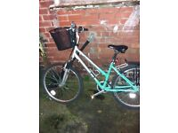 ladies falcon bicycle