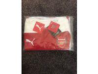 BRAND NEW Arsenal evoKNIT Authentic 18/19 Home Shirt