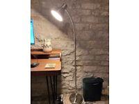 STAINLESS STEEL STANDARD LAMP