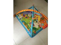 Baby Play Mat with lights and music - animal theme