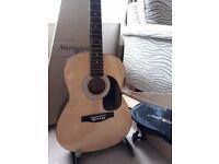 Good beginners guitar