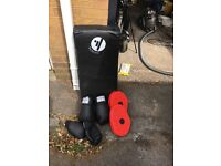 Focus pad set and 2 x boxing/kickboxing gloved