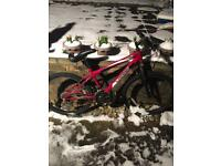 Mountain bike £35 cash - can negotiate about the price