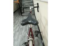 Touring audax bike