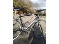 Pinnacle Light weight Aluminium road bike carbon fork