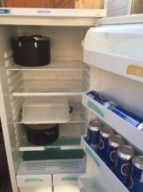 Zannusi larder fridge