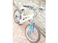 Raleigh Shimmer Girls Bike 19 inch Wheels