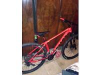 Scott scale mountain bike