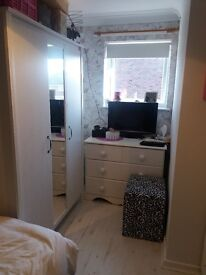 Single large newly decorated room in semi detached house ,Norwich, NR5