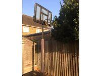 BASKETBALL STAND BEE BALL