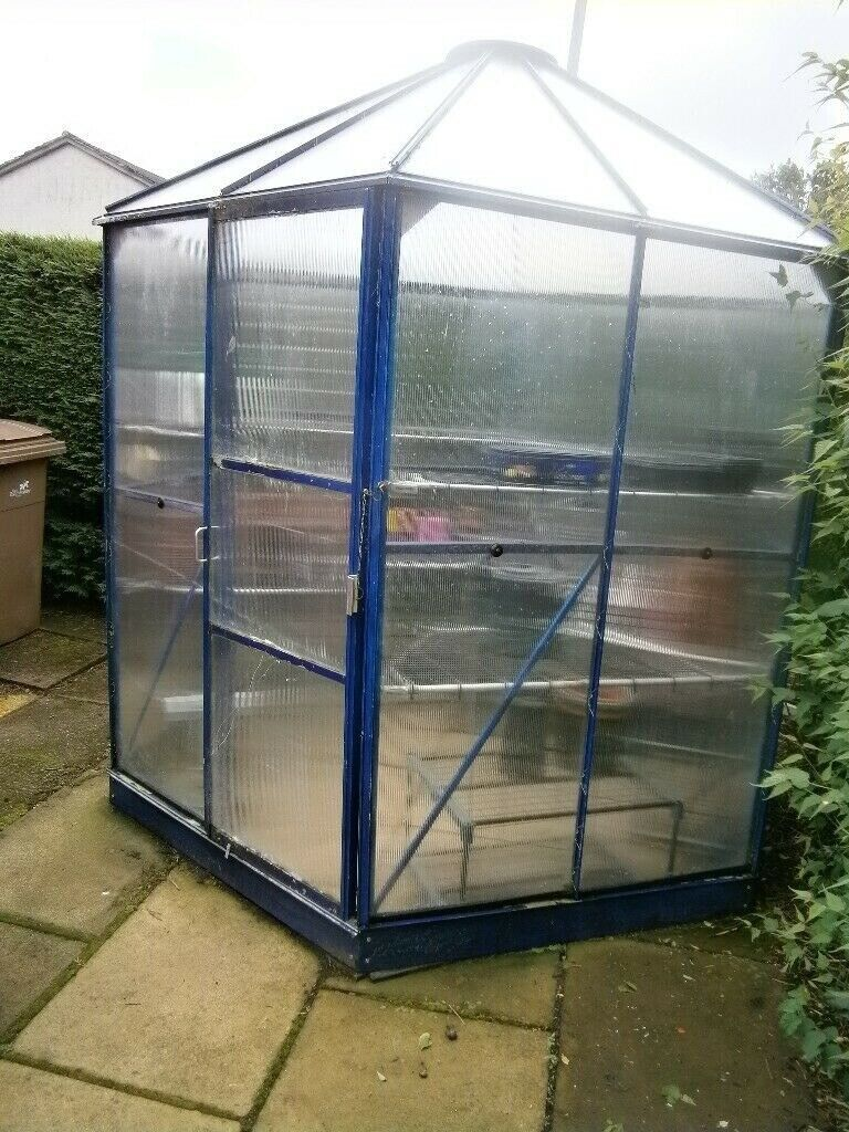 Groovy Hexagonal Polycarbonate Greenhouse Garden Room For Sale Sold Pending Collection In Wishaw North Lanarkshire Gumtree Complete Home Design Collection Barbaintelli Responsecom
