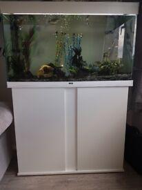 200ltr white gloss fish tank.