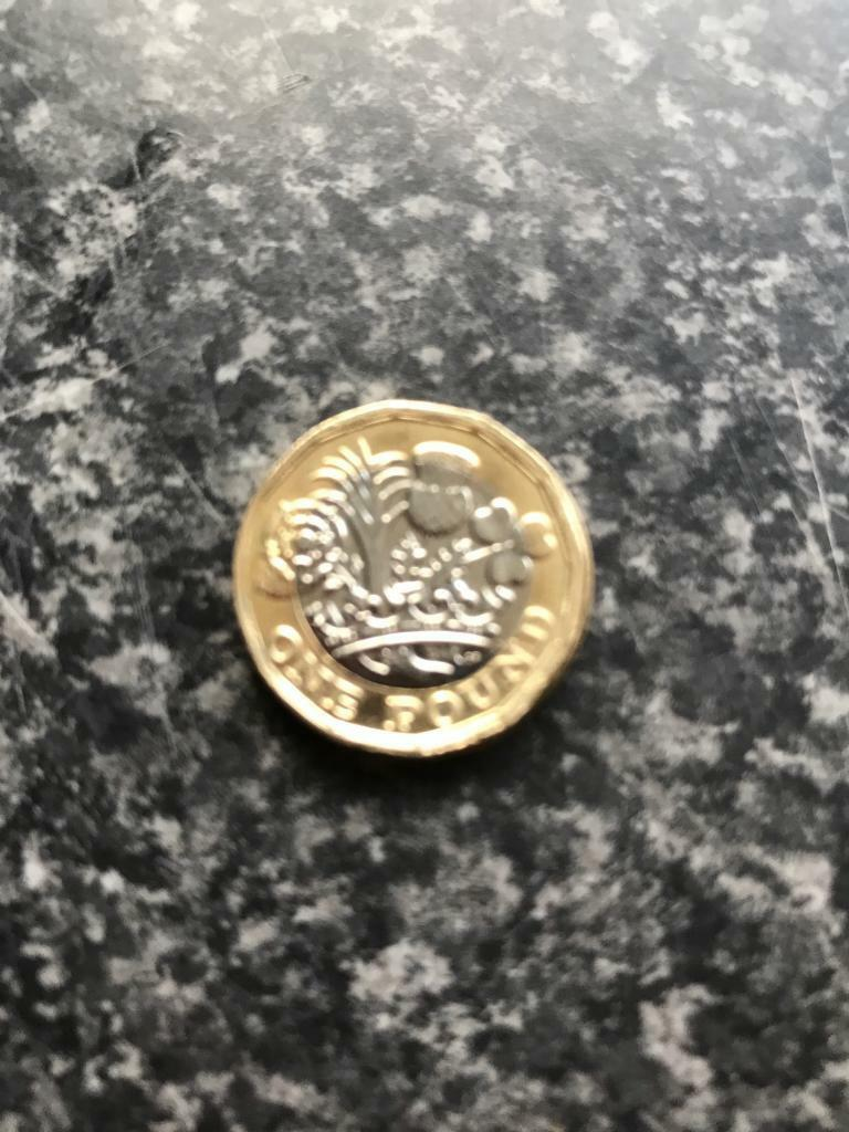 Miss struck rare new pound coin
