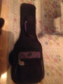 Fender deluxe gig bag