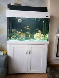 Aqua one fish tank and Stand For Sale