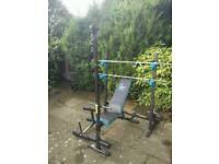 Home Multi Gym with over 140KG of Cast Iron Free Weights