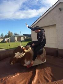Rodeo Bull + Inflatables Hire (bouncy castles, sumo suits, disco domes)