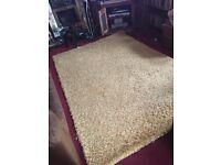 Large Gold lounge / bedroom Rug