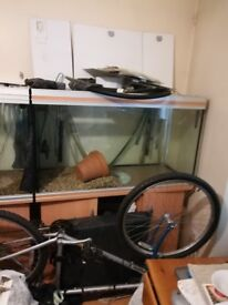 CHEAP BARGAINS: 6.5&4 feet RENA FISH TANKS, EHIEM, FLUVAL,RENA CANISTER FILTERS ETC FOR SALE