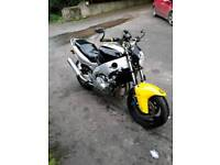 Barn find clearance, thundercat street fighter, TRIUMPH 900 sprint, Z X 10 b1, zzr 600 e read add