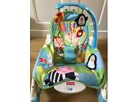 Fisher Price new born to infant rocker