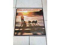Vinyl Records - Albums - 80's & 1990's