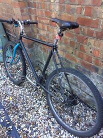 Mountain Bike with bike lock