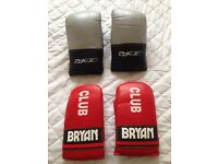BOXING / SPARRING GLOVES