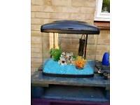 48l Fishpod fish tank