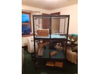 Midwest critter nation cage