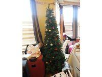 Free christmas tree just paid
