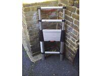 Telescopic ladders (telesteps professional)