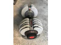 Adjustable dumbbells 32.5kg