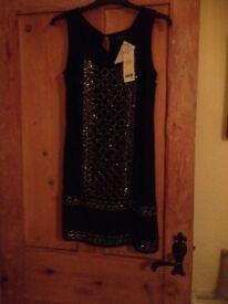 New/ unworn Glitterery party dress. Size 6 to 8 Next Petite Chiffon