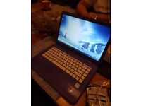 Hp stream laptop purple