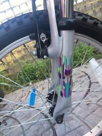 Apollo zest mountain bike
