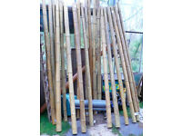 Bamboo Poles 240cm 7.8ft 6-8cm wide Shading Structure Garden Fence China Japan £20 each PICK UP ONLY