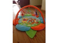 Disney Winnie the Pooh Reversible Play Activity Gym