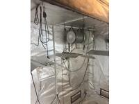 Hydroponics set up grow tent lights fans ballasts complete
