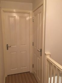 Wooden Door Internal . Farrow & Ball Strong White Fire Safe. H: 197.5 cm W: 76 cm D: 4.5 cm