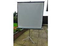 A Portable Projector Screen