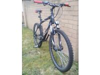 Giant Boulder mountain bike in great condition - Medium frame - 24 speed - just serviced