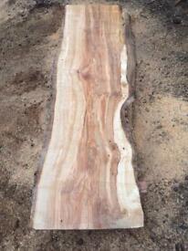 Spalted silver birch elm oak yew ash beach slabs timber boards wood