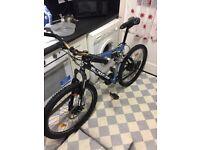 Downhill McKenzie bike