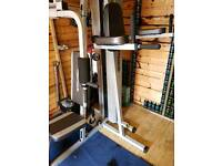 2 station maxi-muscle gym